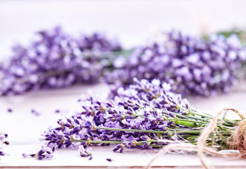 Aromaterapija sa lavandom koja smiruje i uspavljuje
